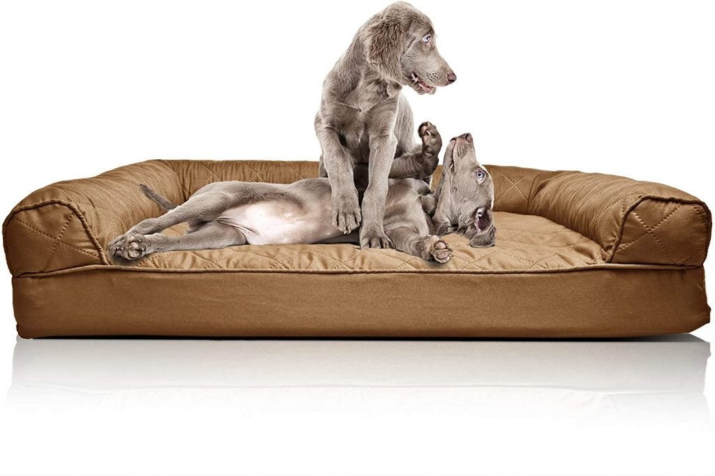 dog couches for extra large dogs